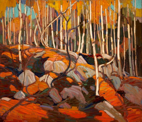 Tom Thomson (Canadian 1877 – 1917) The Birch Grove, Autumn, 1915–16, oil on canvas. Art Gallery of Hamilton. Gift of Roy Cole in memory of his parents, Matthew and Annie Bell Gilmore Cole, 1967