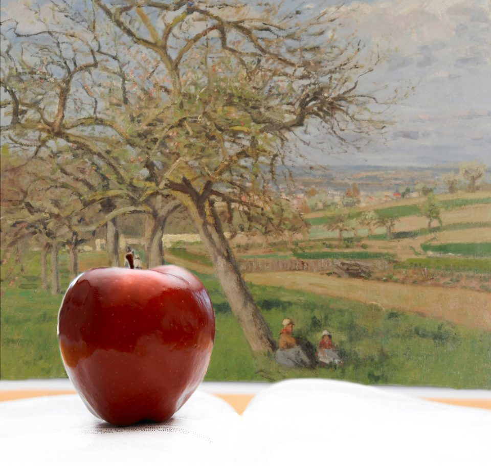 apple on book in front of Pissarro painting
